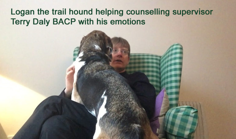 Dogs and counselling.  Are dogs replacing counsellors?