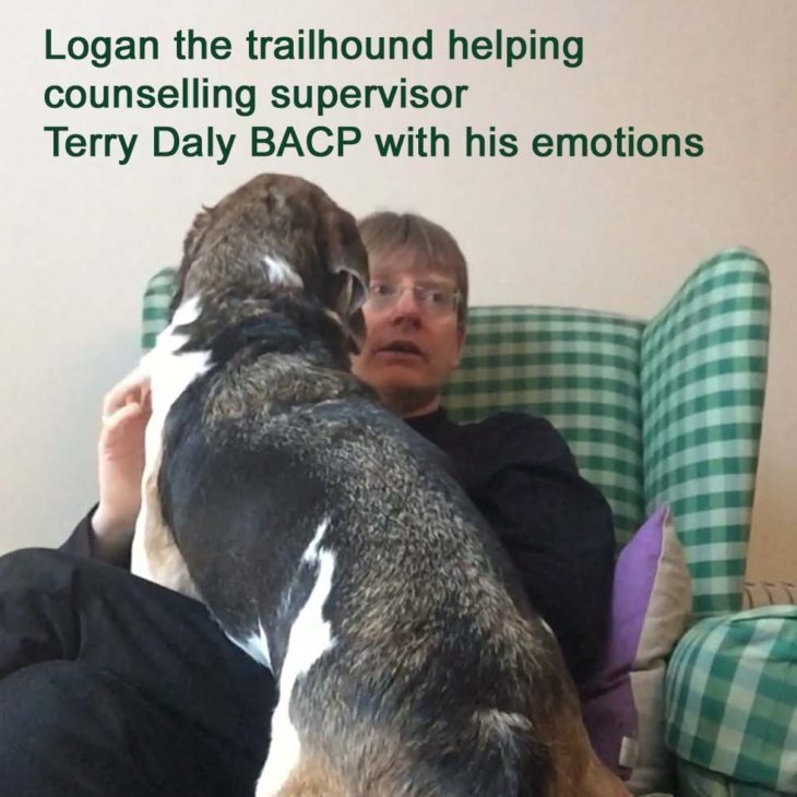 Therapy for dog owner and counsellor
