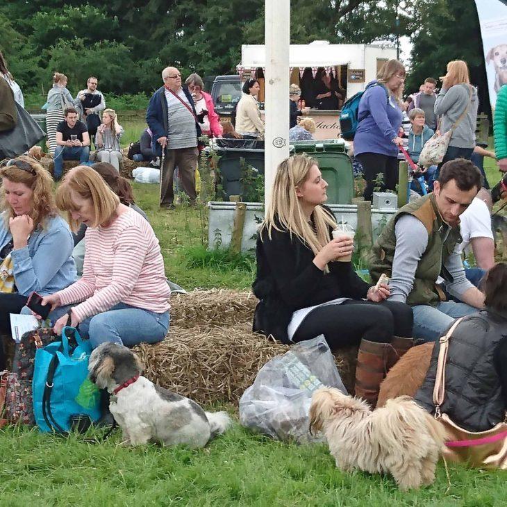 Dog Fest North 2017, Arley Hall