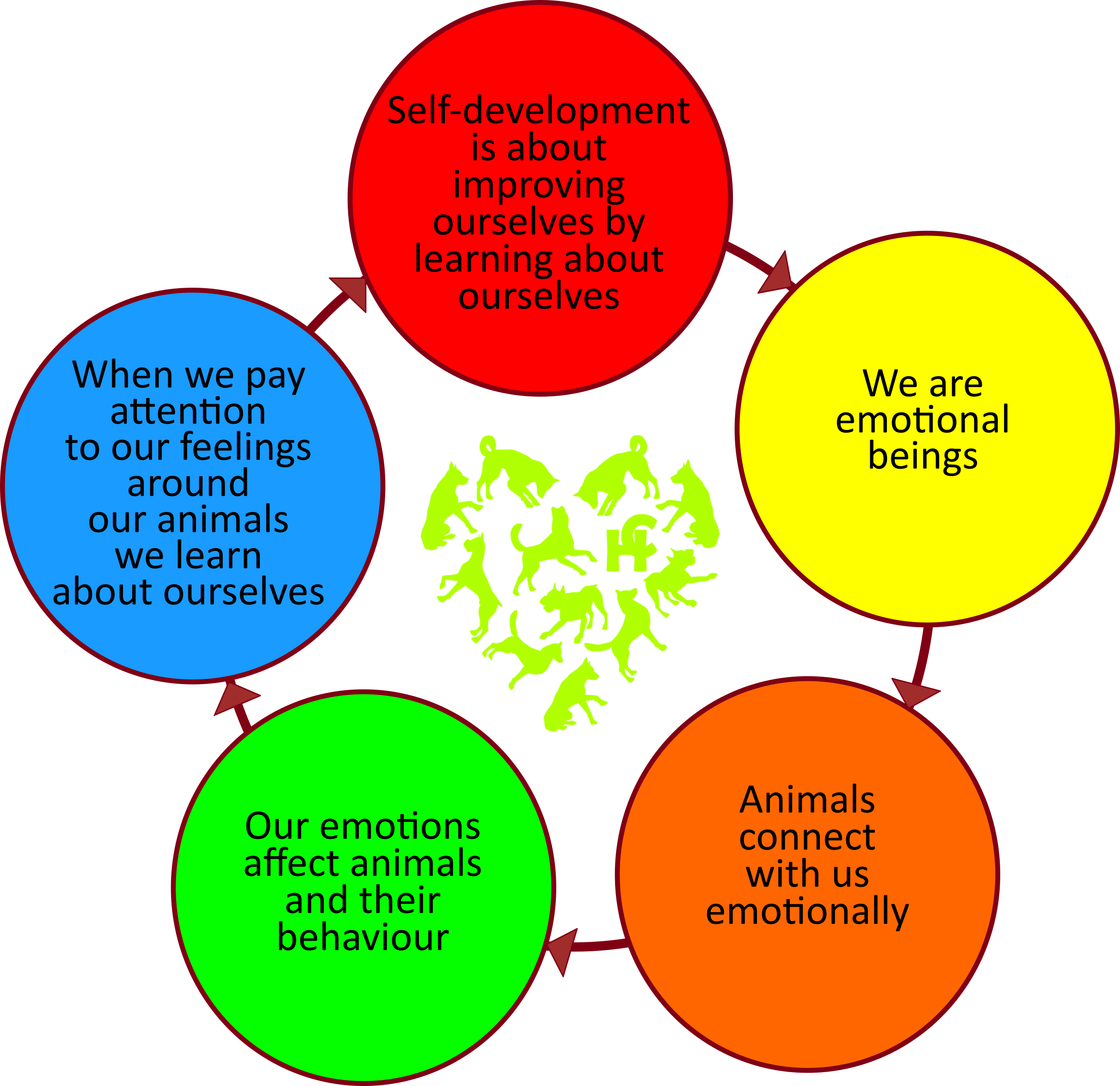 This diagram explains how Anubis Therapy works