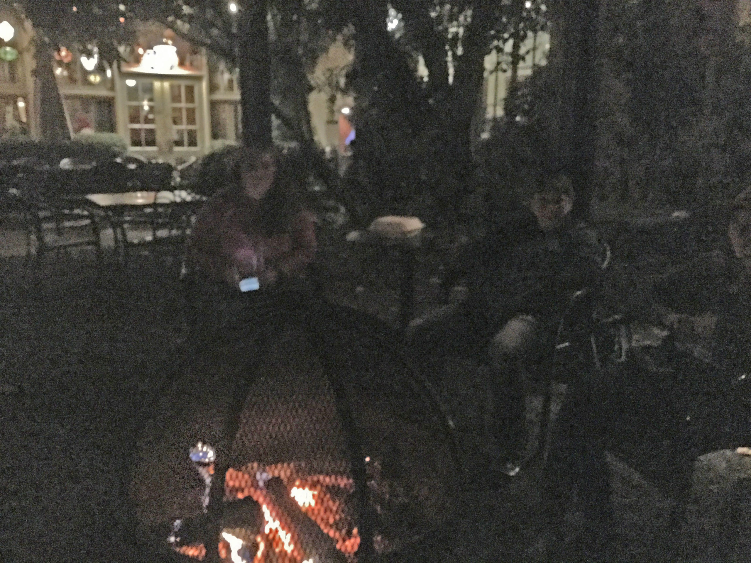 discussing emotions and dogs around a fire