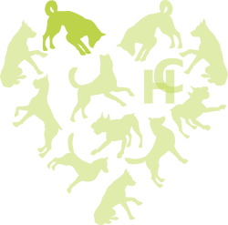 Hounds connect logo with only one of the dogs highlighted in the heart shape
