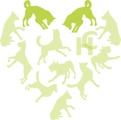Hounds connect logo with two of the dogs highlighted in the heart shape